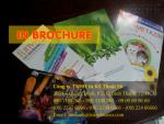 In brochure tại Bình Thạnh, Công ty Quảng Cáo chuyên in brochure quảng cáo, brochure giá rẻ