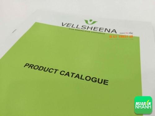 In catalogue sản phẩm cho VellSheena