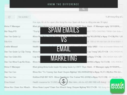 Email Marketing của bạn vào thẳng thùng rác của khách hàng - một sự lãng phí không cần thiết